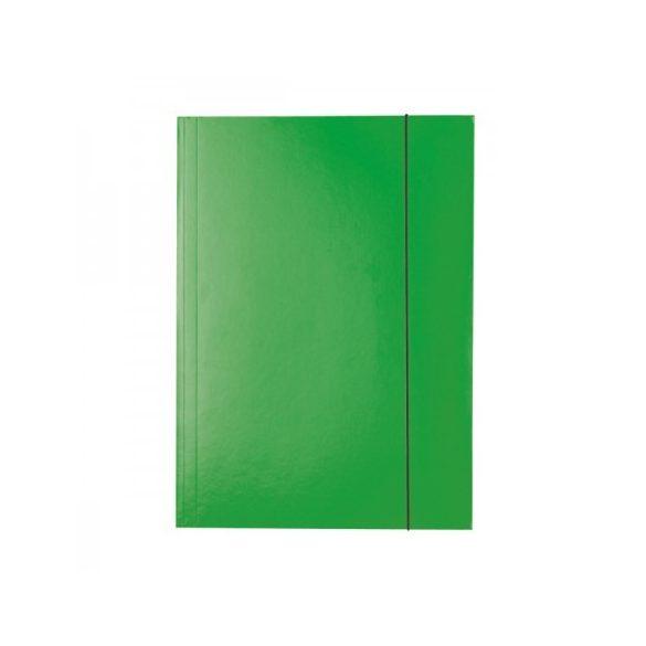 Gumis mappa Ess 13437 economy krt 150L zöld