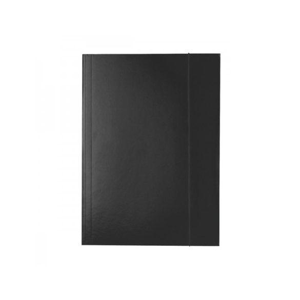 Gumis mappa Ess 13439 economy krt 150L fekete