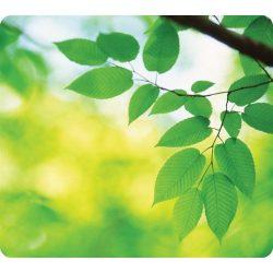 """Egéralátét, újrahasznosított, FELLOWES """"Earth Series™"""", levelek"""